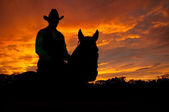 Silhouette of a horse and a rider in a cowboy hat — Stock Photo
