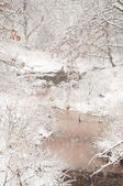 Heavy snowfall over a small creek — Stok fotoğraf