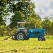 Stock Photo: Mowing weeds in pasture