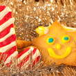 Christmas cookies shaped like candy cane and a happy star — Stock Photo