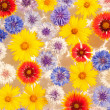 Royalty-Free Stock Photo: Abstract background image of colorful flowers