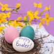 Royalty-Free Stock Photo: Easter eggs nested in a real bird nest