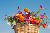 Basket of brilliantly colored flowers and fall foliage — Stock Photo