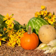 Fresh produce with sunflowers against rustic background — ストック写真