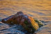 Rock in Lake Geneva, Switzerland reflecting the morning sunlight — Stock Photo