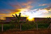 Sunset a vlakem — Stock fotografie