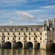 Chateau de Chenonceau — Stock Photo #6740572