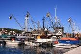 Barche da pesca nel porto di lussino maschio — Foto Stock