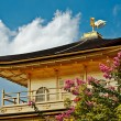 The Golden Pavilion (Kinkakuji Temple) in Kyoto, Japan - Stock Photo