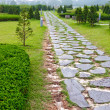 Garden path — Stock Photo #6169222