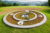 Flower clock on lawn background — Stock Photo