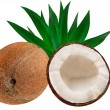 Royalty-Free Stock Photo: Coconut
