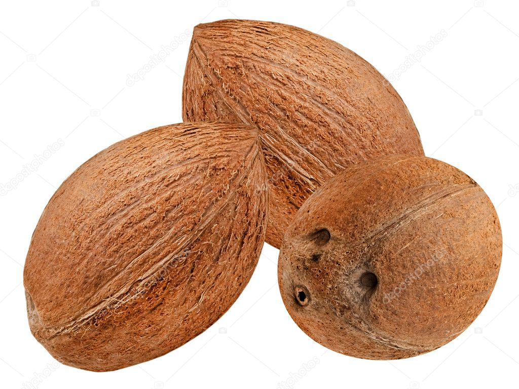 Coconut isolated on white background — Stock Photo #5563057