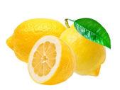 Limone — Foto Stock