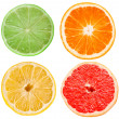 Citrus slices — Foto de stock #5816064