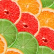 Citrus slices — Stock Photo #5958543