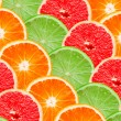 Citrus slices — Stock Photo #6006426