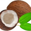 Stock Photo: coconut