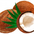 Coconut - Stok fotoraf