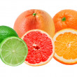 Citrus fruits — Stock Photo #6313087