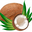 Coconut — Stock Photo #6432444