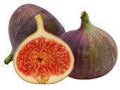 Fresh fig fruit — Stock Photo