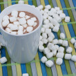 Stock Photo: Cup of Hot Chocolate