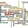 Foto Stock: Dog Breed Word Cloud