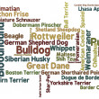Dog Breed Word Cloud - Stockfoto