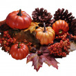 Fall Arrangement Isolated on White — Stock Photo