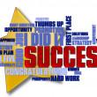 Success Word Cloud — Stock Photo