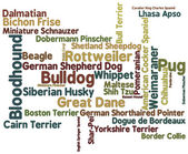 Dog Breed Word Cloud — Zdjęcie stockowe
