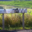 Seven mail boxes on a country road - Foto Stock