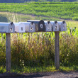 Stock Photo: Seven mail boxes on country road
