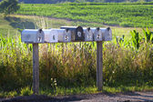 Seven mail boxes on a country road — Stock Photo