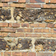 Brick wall and stone — Stock Photo #6238138