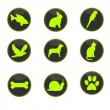 Stock Photo: Animals button
