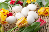 Eggs and flowers lying on the straw tray — Stock Photo