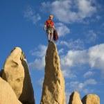 Rock climber on the summit. — Stock Photo #5647243