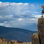 Rock climber nearing the summit. — Stock Photo #5900616