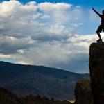 Rock climber nearing the summit. — Stock Photo #5900643