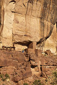 Hiker explores an ancient Anasazi cliff-dwelling. — Foto de Stock