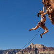 Female rock climber clinging to a cliff. — Stock Photo #5925093