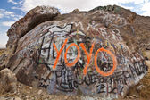 Graffiti covered boulder. — Stock Photo