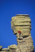 Grimpeur accroché à une falaise. — Photo