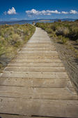 Walkway to Mono Lake. — Stock Photo