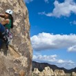 Female rock climber. - Foto Stock