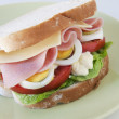 Sandwich — Stock Photo #5742422