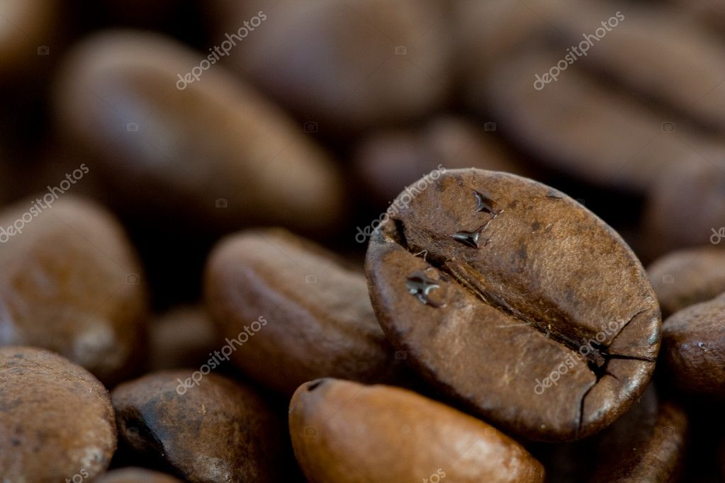 Grains of brown coffe. Closeup of some grains of coffe — Stock Photo #5742365