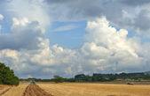 Majoca's agriculture — Stock Photo